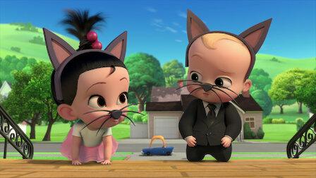 觀賞潛入貓咪巢穴大宅。第 1 季第 8 集。